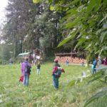 Jahresausflug 2004: Wanderung und Rückreise mit Pferd und Wagen